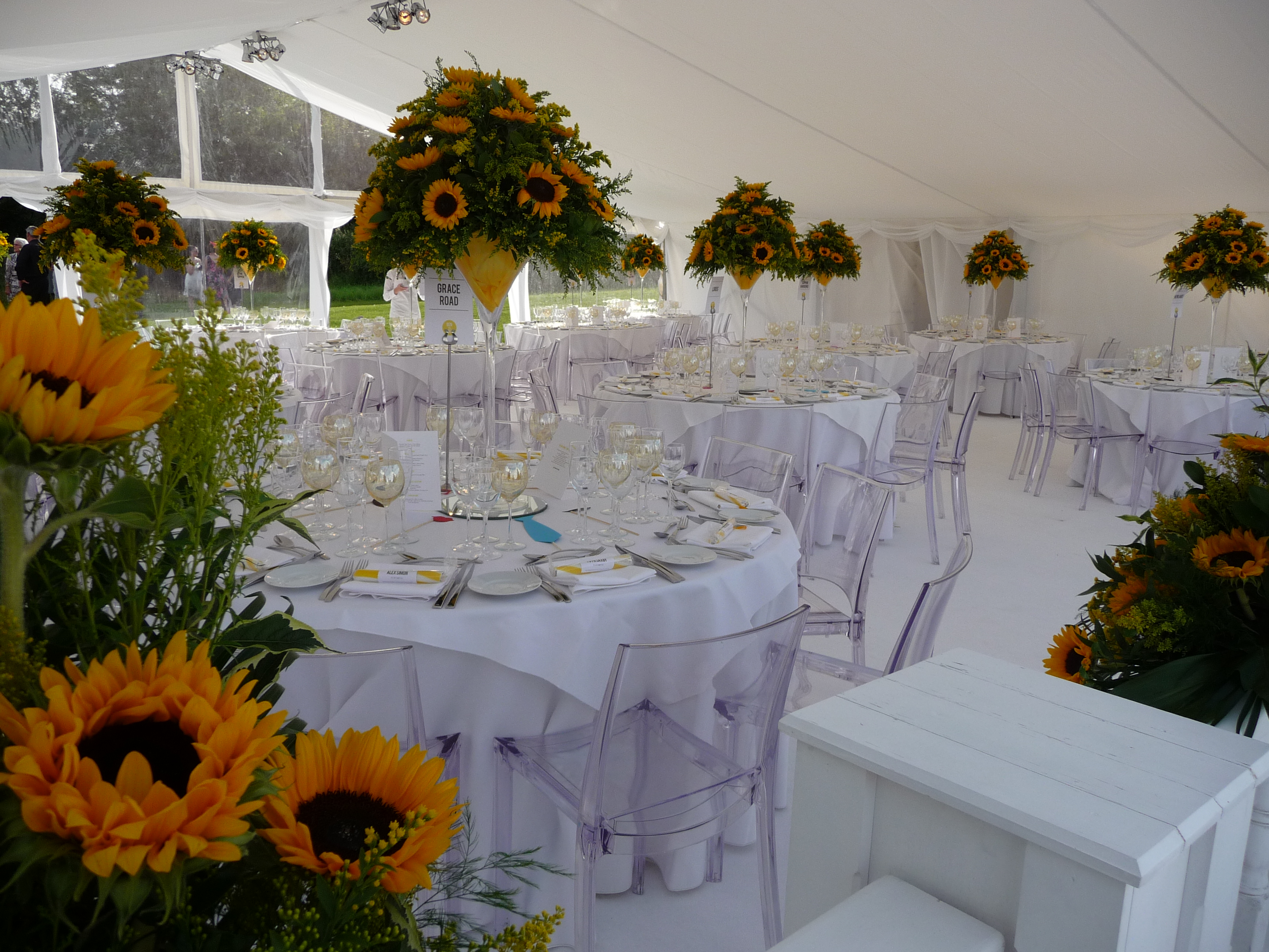 Ben and Julia's Marquee